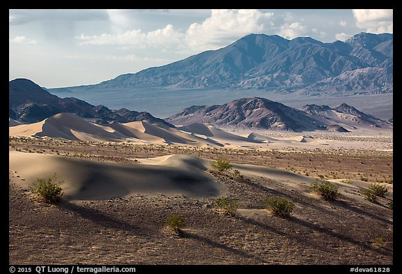 Ibex Dunes and mountains. Death Valley National Park (color)