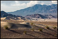 Ibex Dunes and mountains. Death Valley National Park ( color)