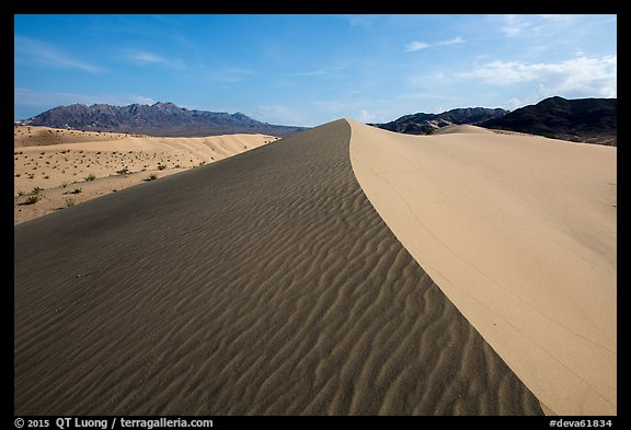 Dune ridge and ripples, Ibex Dunes. Death Valley National Park (color)