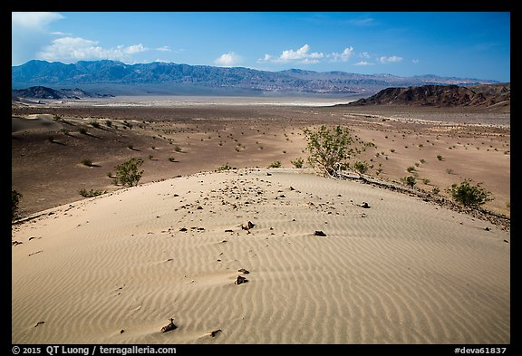 Ibex Dunes and valley. Death Valley National Park (color)