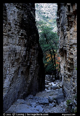Narrow passage between cliffs, Devil's Hall. Guadalupe Mountains National Park (color)