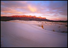 Salt Basin dunes and Guadalupe range at sunset. Guadalupe Mountains National Park, Texas, USA. (color)