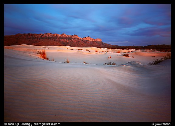Gypsum sand dunes and last light on Guadalupe range. Guadalupe Mountains National Park (color)