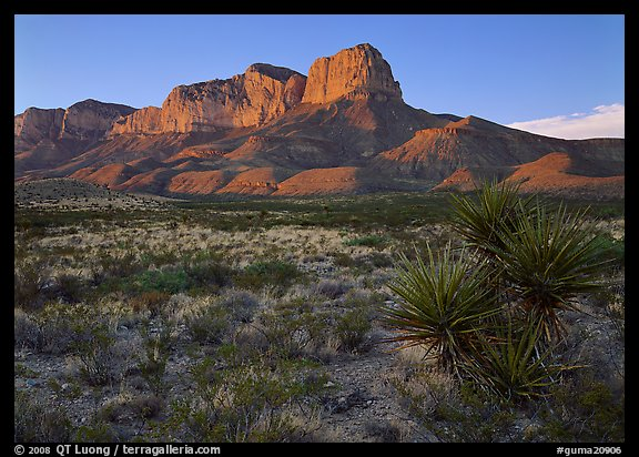 El Capitan from Williams Ranch road, sunset. Guadalupe Mountains National Park (color)