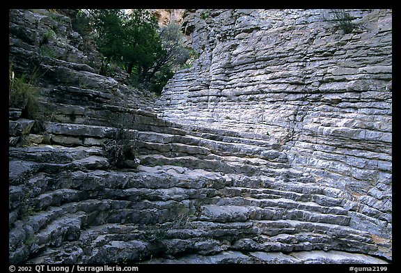 Hiker's Staircase, Pine Spring Canyon. Guadalupe Mountains National Park (color)