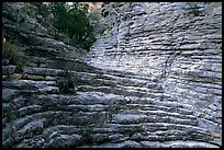 Hiker's Staircase, Pine Spring Canyon. Guadalupe Mountains National Park, Texas, USA. (color)