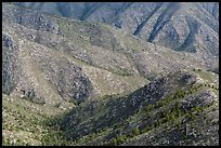 Ridges from fossil Reef. Guadalupe Mountains National Park, Texas, USA. (color)