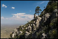 Slopes with trees and rocks high above plain. Guadalupe Mountains National Park, Texas, USA. (color)