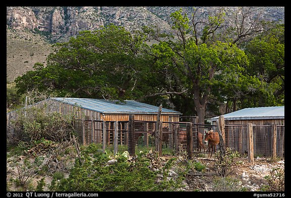 Frijole Ranch stables. Guadalupe Mountains National Park (color)