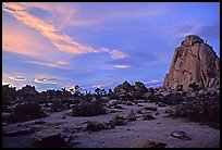 Landscape with climbers at sunset. Joshua Tree National Park, California, USA.