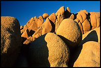 Jumbo rocks, sunset. Joshua Tree National Park, California, USA.