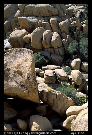 Jumble of rocks in Hidden Valley. Joshua Tree National Park (color)