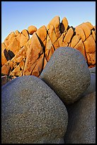 Boulders, Jumbo Rocks campground, sunset. Joshua Tree National Park, California, USA. (color)