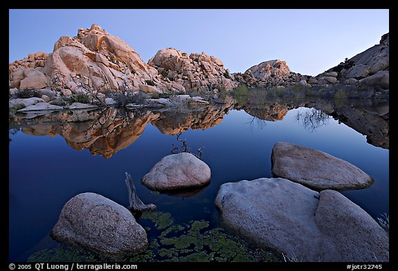 Boulders reflected in water, Barker Dam, dawn. Joshua Tree National Park (color)
