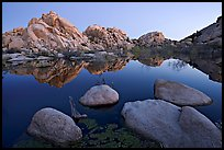Boulders reflected in water, Barker Dam, dawn. Joshua Tree National Park ( color)