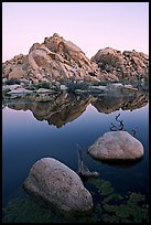 Rockpiles and reflections, Barker Dam, dawn. Joshua Tree National Park ( color)