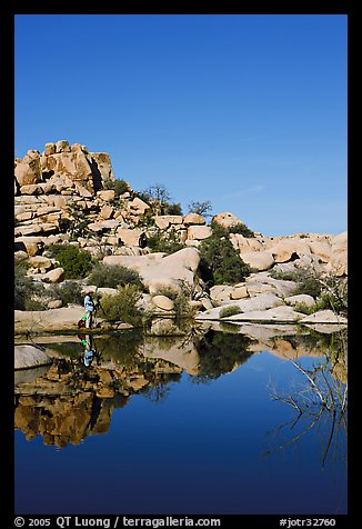 Photographer at Barker Dam. Joshua Tree National Park (color)