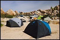 Tents, Hidden Valley Campground. Joshua Tree National Park, California, USA. (color)