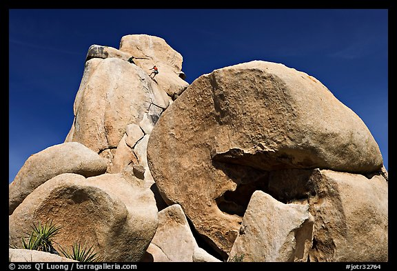 Rocks with climbers in a distance. Joshua Tree National Park (color)