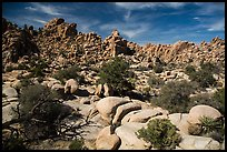 Hidden Valley. Joshua Tree National Park ( color)