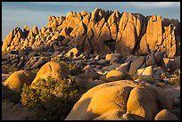 Rock wall with marble rocks at sunset, Jumbo Rocks. Joshua Tree National Park ( color)