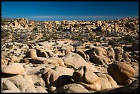 Landscape of rocks, White Tank. Joshua Tree National Park ( color)