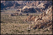 Boulders outcrops and Joshua Trees from above. Joshua Tree National Park ( color)
