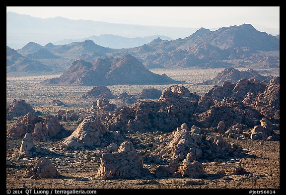 Wonderland of rocks. Joshua Tree National Park (color)