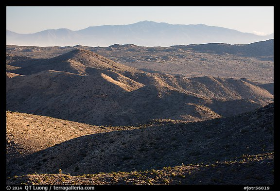 San Bernardino Mountains from Ryan Mountain. Joshua Tree National Park (color)