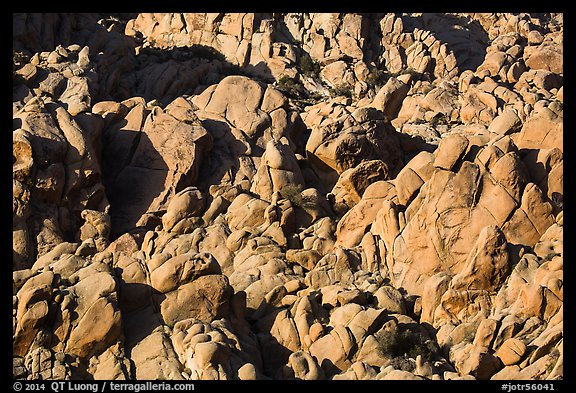Boulder outcrop detail, Indian Cove. Joshua Tree National Park (color)