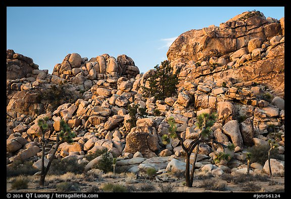 Joshua trees and tall rock outcrops. Joshua Tree National Park (color)