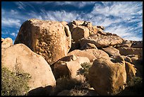 Boulder outcrop. Joshua Tree National Park ( color)