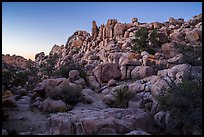 Dusk, Hidden Valley. Joshua Tree National Park ( color)
