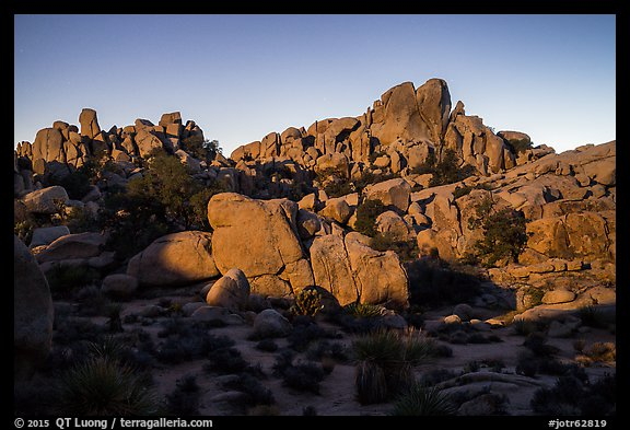 Moonlight, Hidden Valley. Joshua Tree National Park (color)