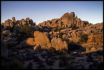 Moonlight, Hidden Valley. Joshua Tree National Park ( color)