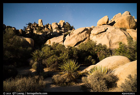 Hidden Valley at night. Joshua Tree National Park (color)