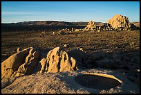 View from top of rock over Joshua Tree plain. Joshua Tree National Park ( color)