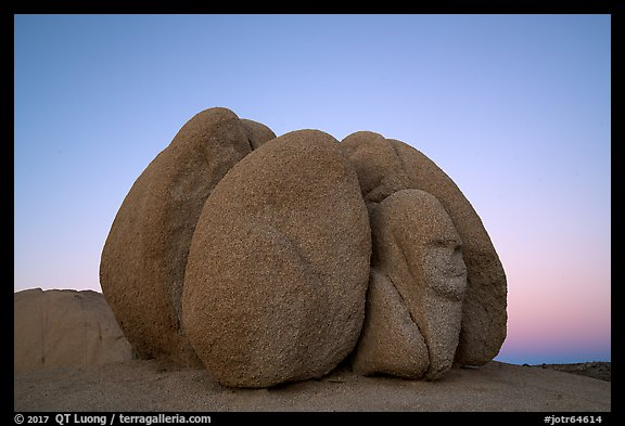 Group of boulders with sphynx head at dawn. Joshua Tree National Park (color)