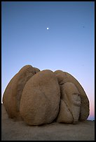 Group of boulders with sphynx and moon at dawn. Joshua Tree National Park ( color)
