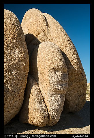 Sphynx-shaped boulder. Joshua Tree National Park (color)