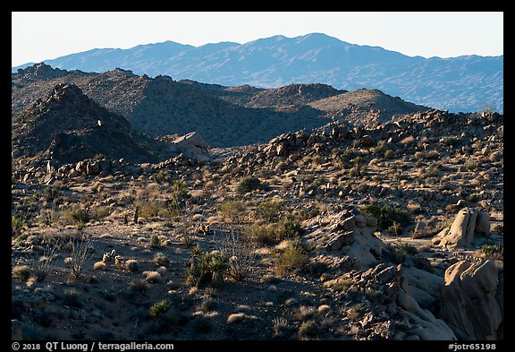 Boulders, ridges, and Eagle Mountain. Joshua Tree National Park (color)