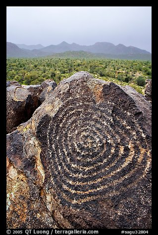 Circular Hohokam petroglyphs on Signal Hill. Saguaro National Park (color)