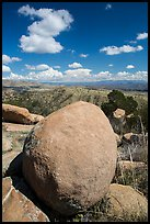 Round boulder, Rincon Mountains foothills. Saguaro National Park ( color)