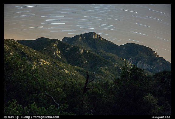 Rincon Peak at night with star trails. Saguaro National Park (color)