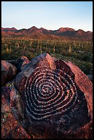 Spiral petroglyph and Tucson Mountains at sunset. Saguaro National Park ( color)