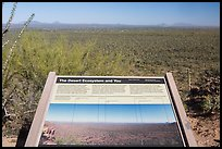 Desert Ecosystem interpretive sign. Saguaro National Park ( color)