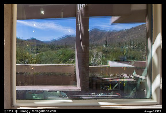 Tucson Mountains and cactus, Red Hills Visitor Center window reflexion. Saguaro National Park (color)