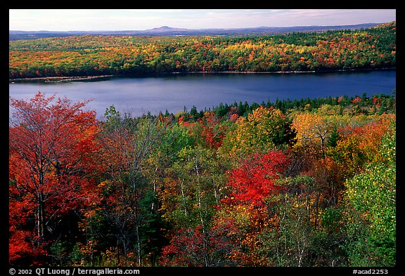 Eagle Lake and autumn colors. Acadia National Park (color)