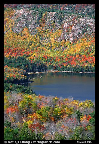 Eagle Lake, surrounded by hillsides covered with colorful trees in fall. Acadia National Park (color)