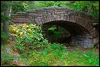 Carriage road bridge. Acadia National Park ( color)